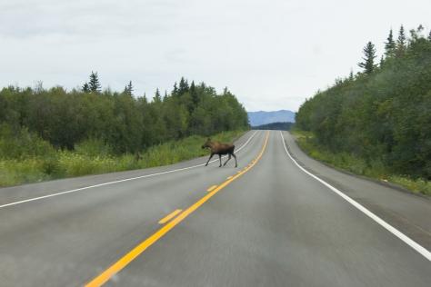 Alaska_IGSS-94