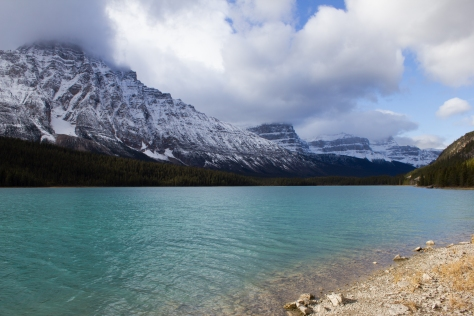 waterfowl_lake_1