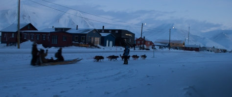 Svalbard_dog_sled