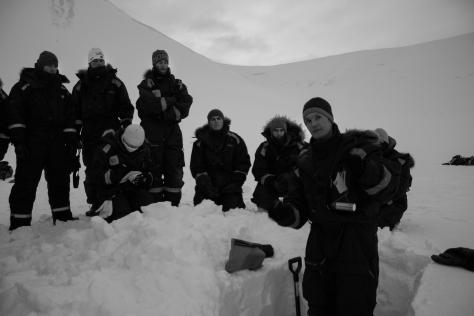 Svalbard_scott_turnerbreen_snowpit_density
